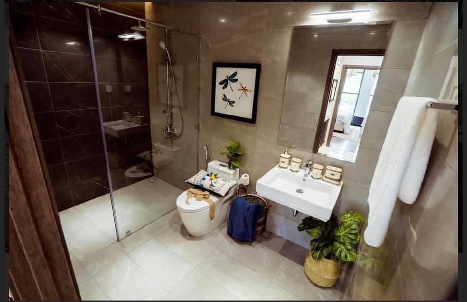 toilet Diamond Centery Celadon City
