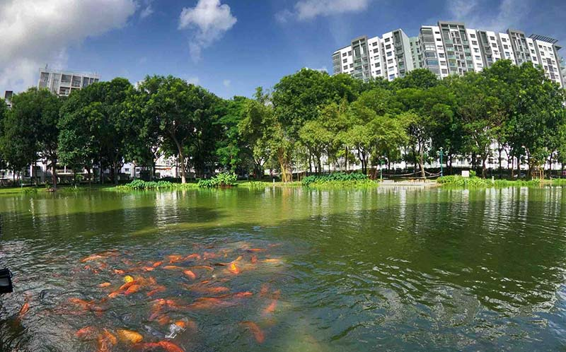 cong vien emerald celadon city tan phu 4